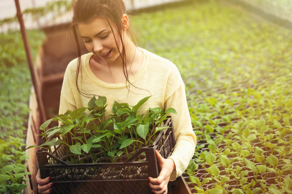 Revolucionaria innovación agrícola con alta tecnología